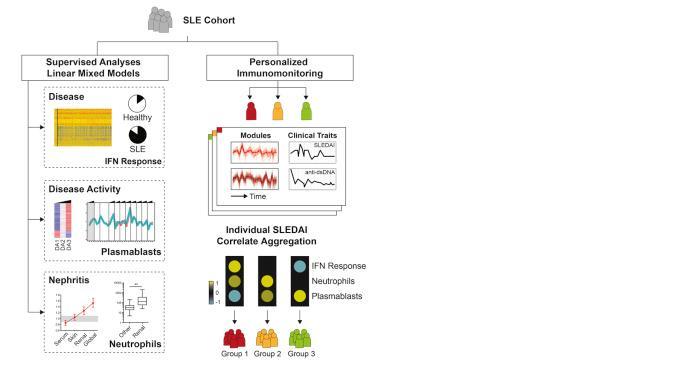Un pas de plus vers un suivi moléculaire individualisé des patients lupiques