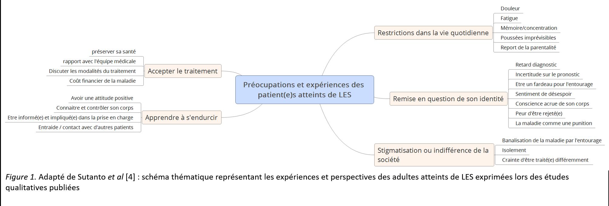 Préoccupations des patients atteints de LES: résultat des enquêtes qualitatives